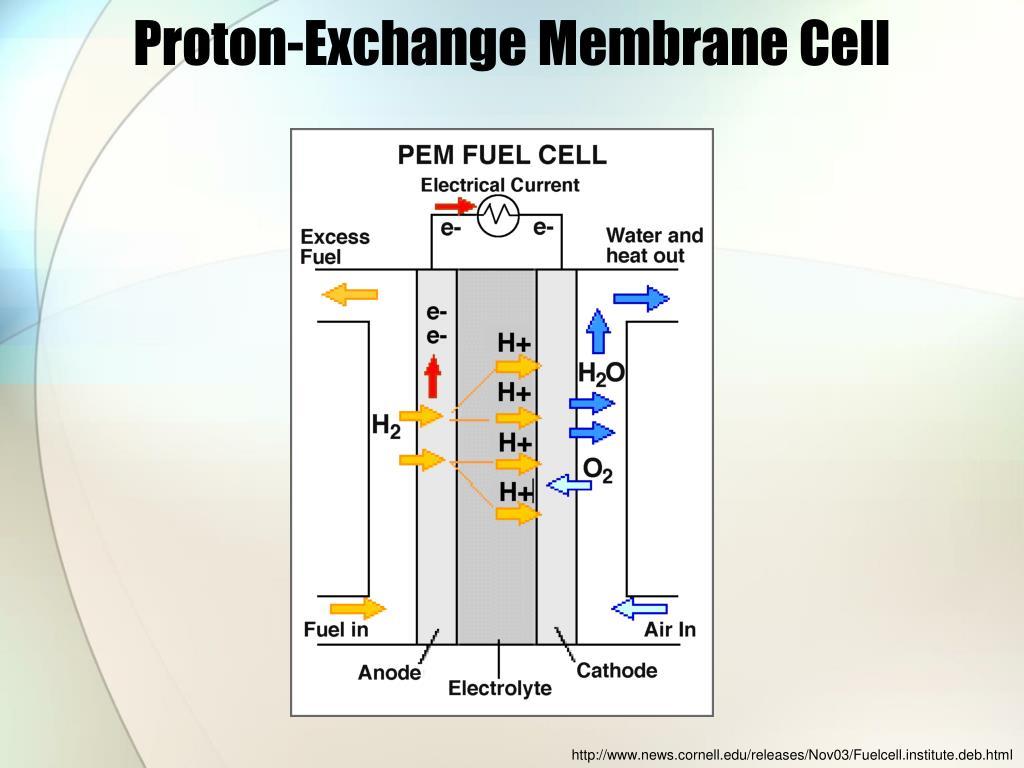 Fuel Cells PowerPoint Presentation
