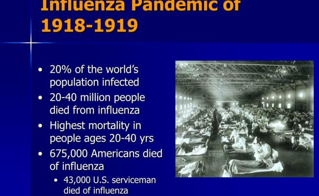 Ppt Pandemic Influenza From A Healthcare Perspective Powerpoint Presentation Id 773712