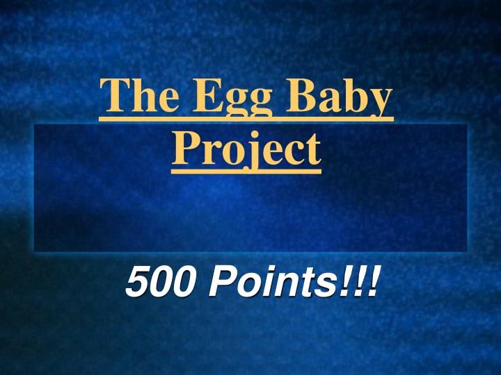 PPT  The Egg Baby Project PowerPoint Presentation  ID982417