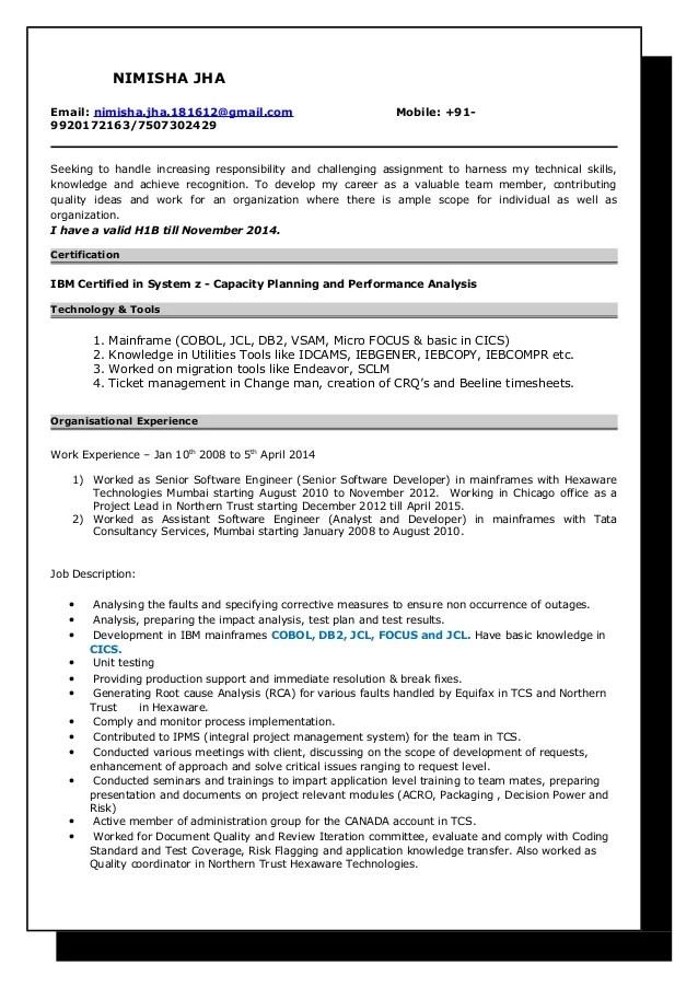 h1b resume template
