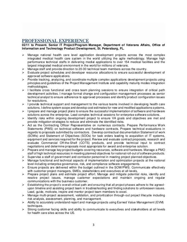 Mercado Program Project Manager Executive Resume V3