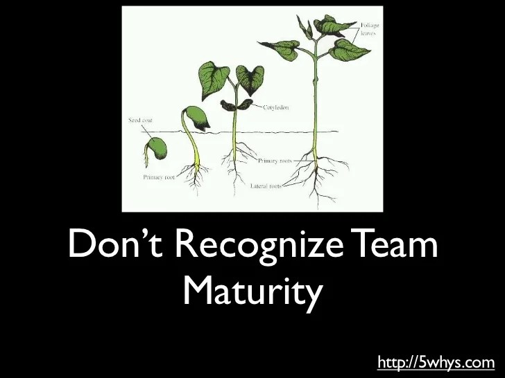 10 mistakes software team leaders make