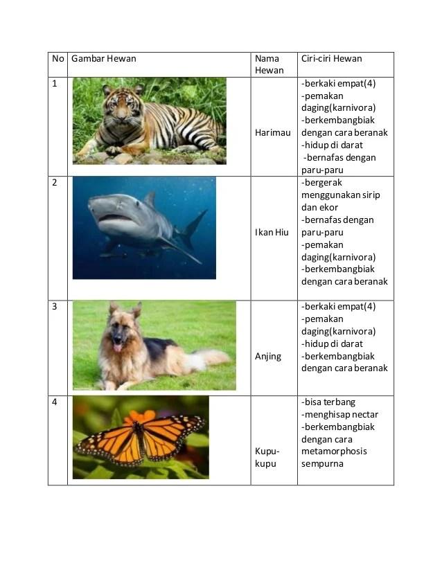 Vivipar Adalah : vivipar, adalah, Hewan, Berkembang, Dengan, Vivipar, Bagis, Dubai, Khalifa