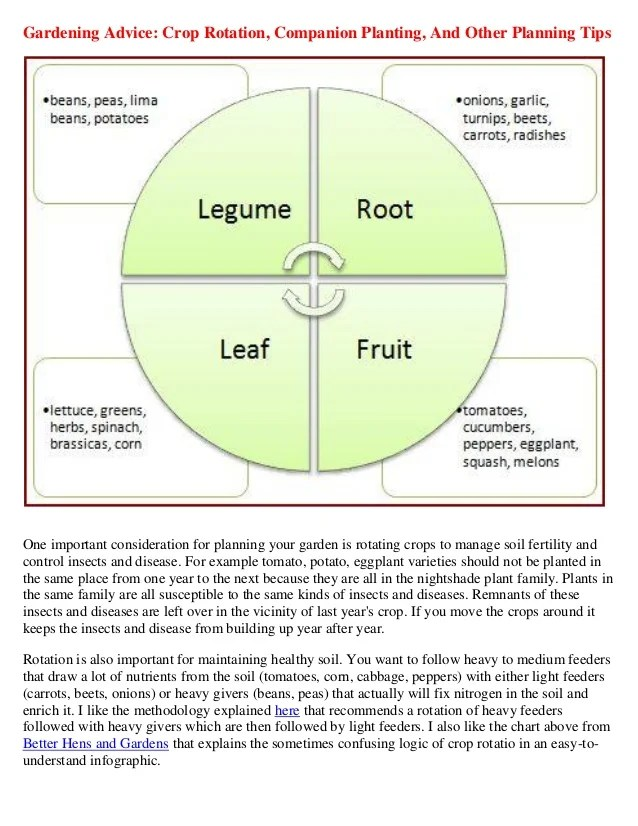 Gardening Advice  Crop Rotation, Companion Planting, and