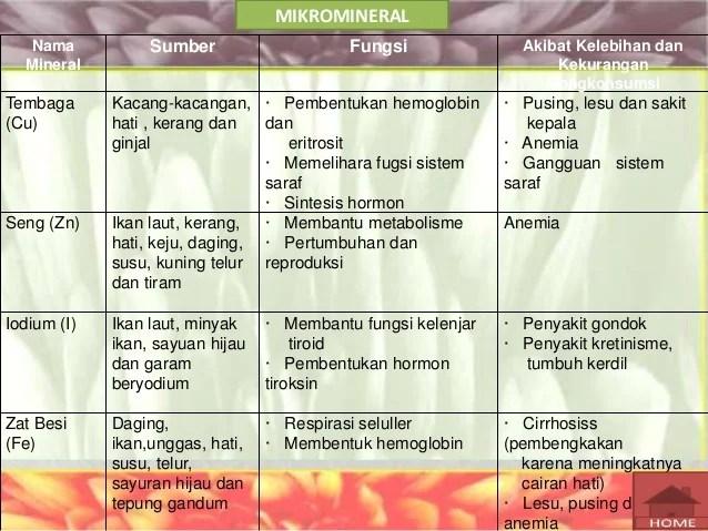 14708259005 karbohidrat protein lemak vitamin mineral