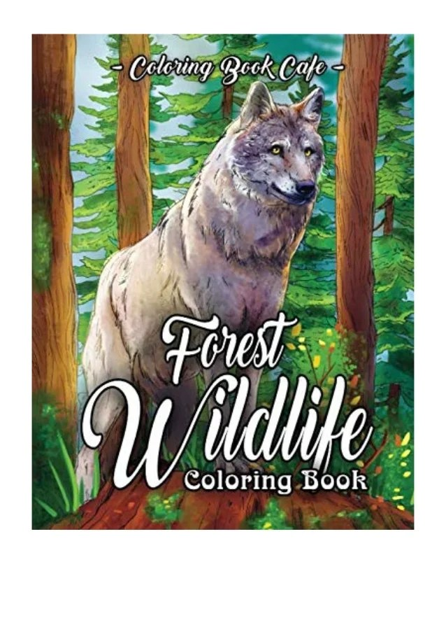 birds are essential components of forest ecosystems. 2019 Forest Wildlife Coloring Book Pdf An Adult Coloring Book Fe