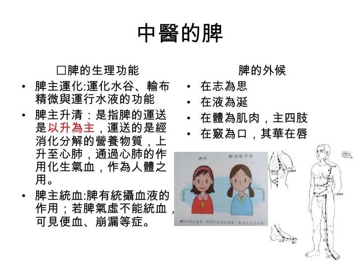 2012 05-26 崇文-五臟及腦