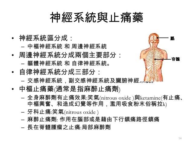 2013 05-25 怡昌-經絡與傷寒論之關係簡介