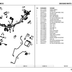 5 Pin Relay Wiring Diagram Horn Golgi Apparatus Structure 390duke
