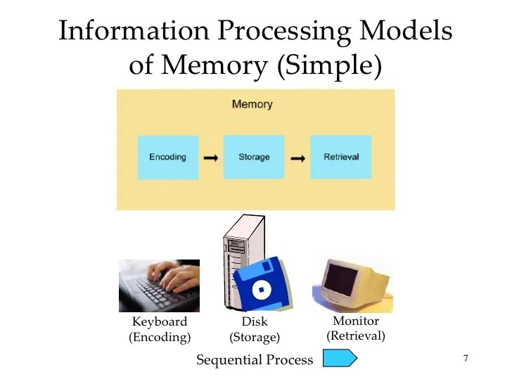 Introductory Psychology Memory