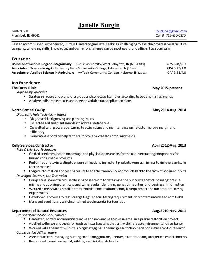 resume n english