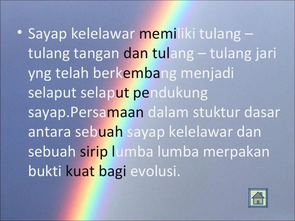 Biologi Evolusi Kelas 12