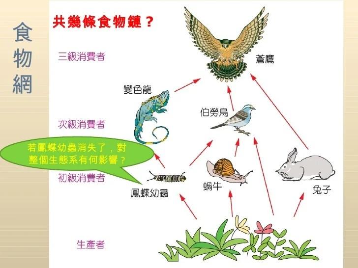 3-3生態系