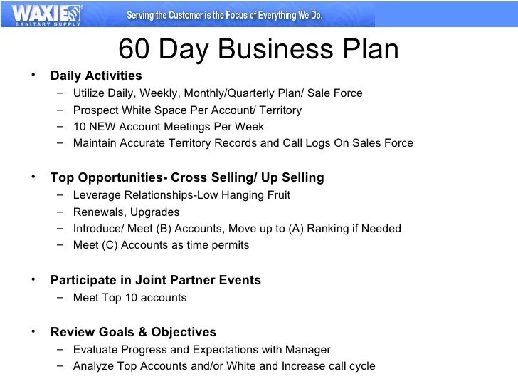 Free Business Plan For Sales Reps