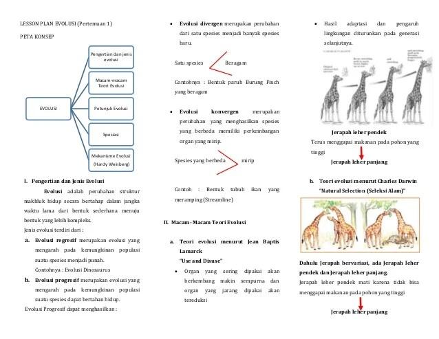 Melihat kedudukan ilmu evolusi dalam kaitan ilmu biologi molekuler,. Materi Tentang Evolusi Manusia - Guru Ilmu Sosial