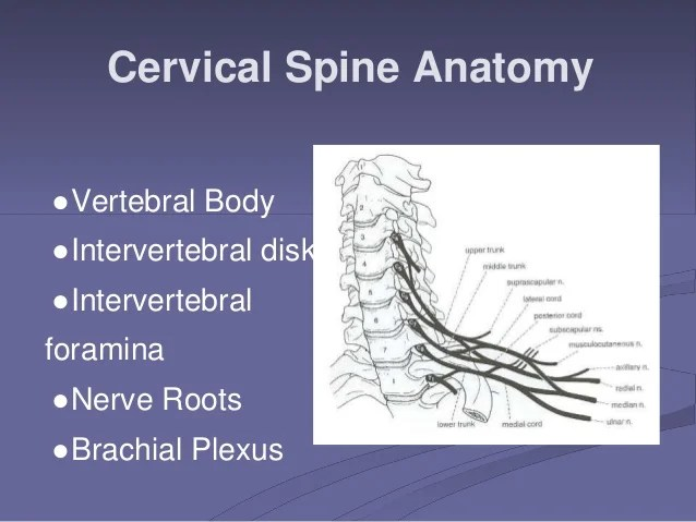 Cervical Radiculopathy Power Pointppt