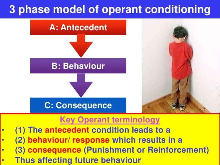 operant conditioning in the classroom pdf