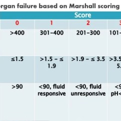 Modified Sofa Score Calculator Klaussner Leather Sofas Scoring And Risk Stratification Of Acute Pancreatitis