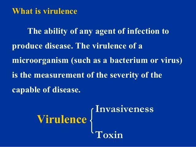 4 bacterial infection and pathogenesis