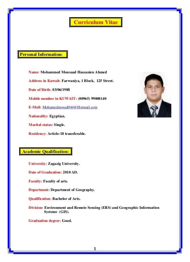 Mohammed Mousaad CV