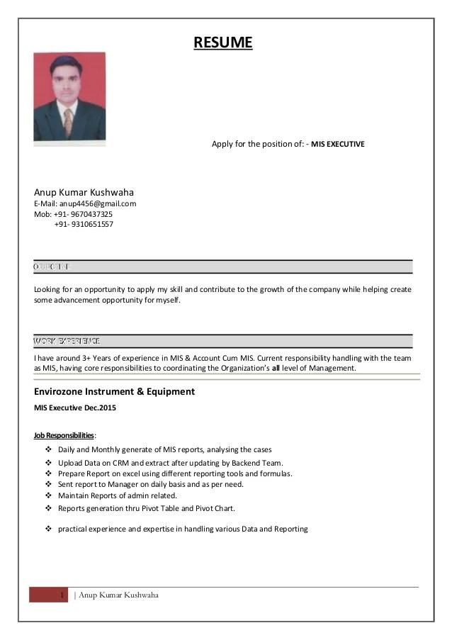 Resume Of Mis Executive  Resume Ideas