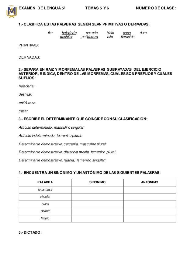 Examen De Lengua Temas 5 Y 6