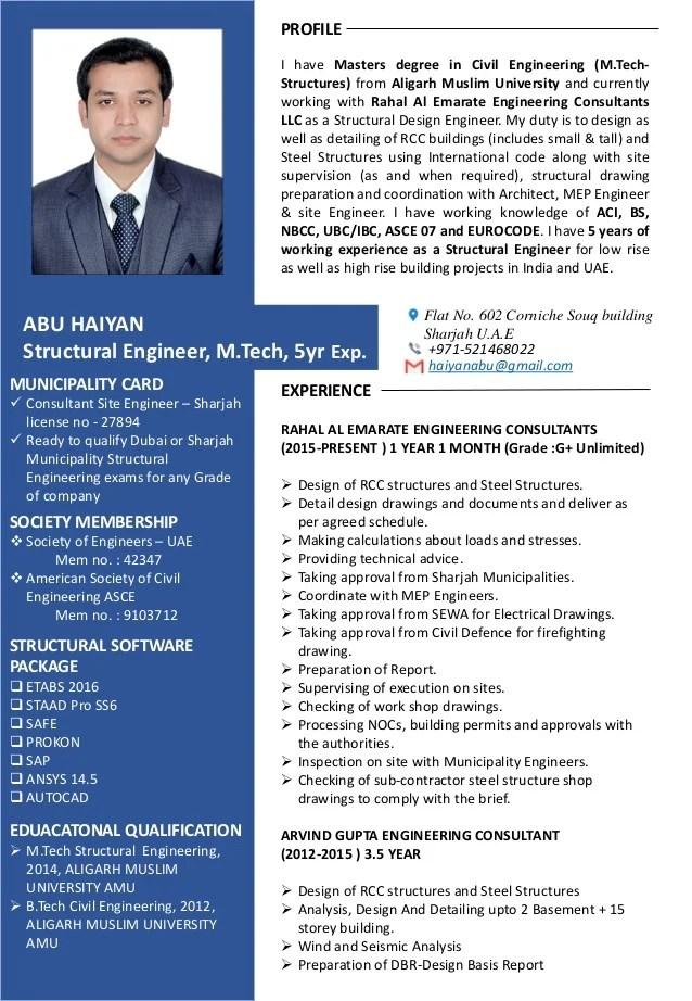 resume of auditor