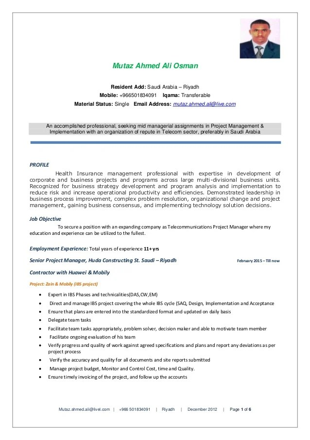 english cv project manager