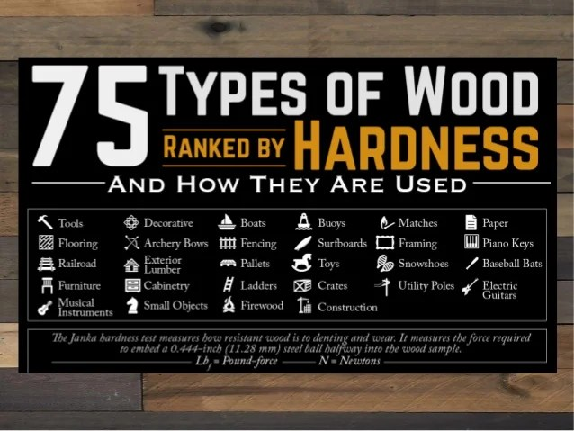 75 Types Of Wood Ranked By Hardness And How They Are Used