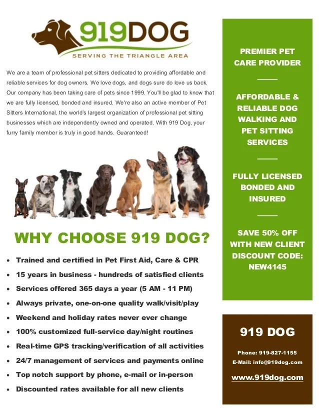 919Dog Com Local Dog Walking & Pet Sitting Services In