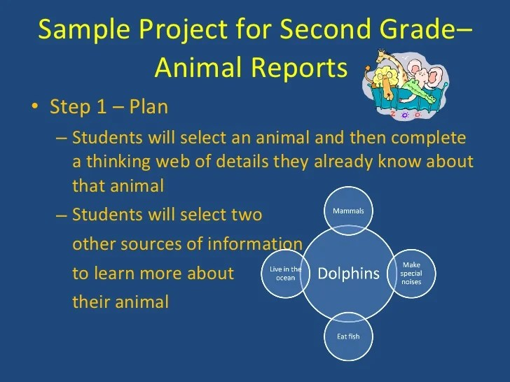 2nd Grade Animal Research Papers Custom Paper Help
