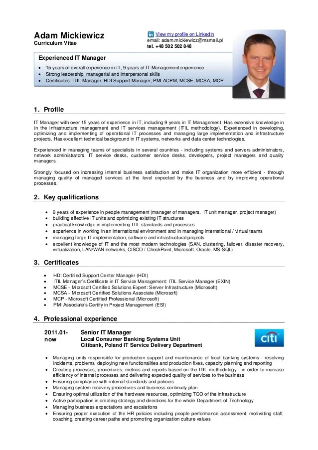 cv anglais professional profile