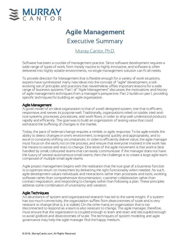 Agile Executive Summary