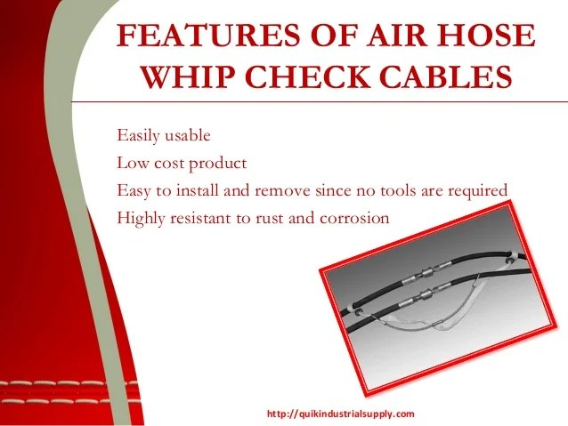 Find the best quality Air Hose Whip Check