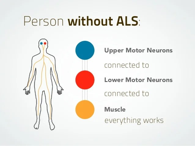Person Without ALS Upper Motor