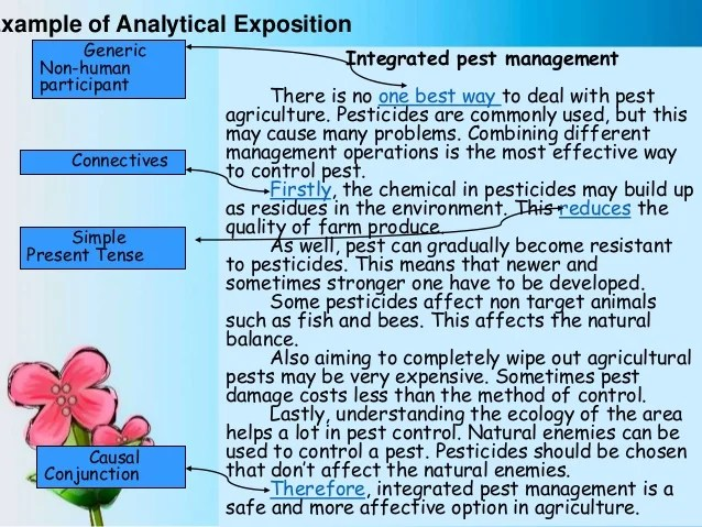 Contoh Rpp Analytical Exposition Merry Ccc