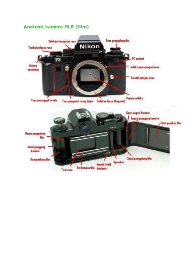 Bagian-bagian Kamera : bagian-bagian, kamera, Anatomi, Kamera