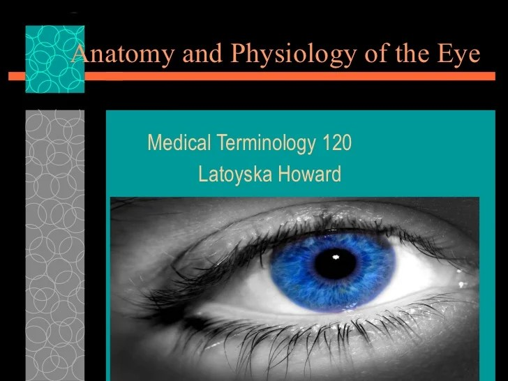 Anatomy and physiology of the eye