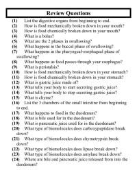 Printable Worksheets  Excretory System Worksheets ...