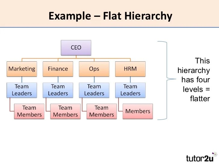 Example  flat also hrm organisational structure rh slideshare