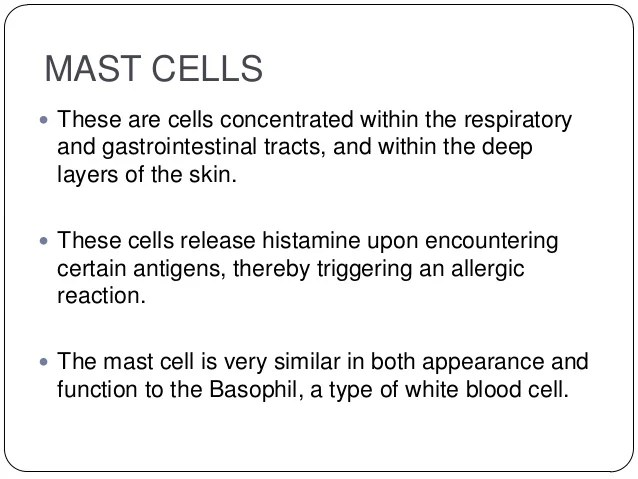 eosinophils these cells also structure and function of the immune system rh slideshare