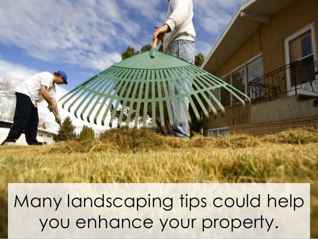guide successful landscaping