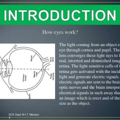 Diagram Of Artificial Eye 2000 Honda Accord Parts M I T Manipur 2 3 How Eyes Work