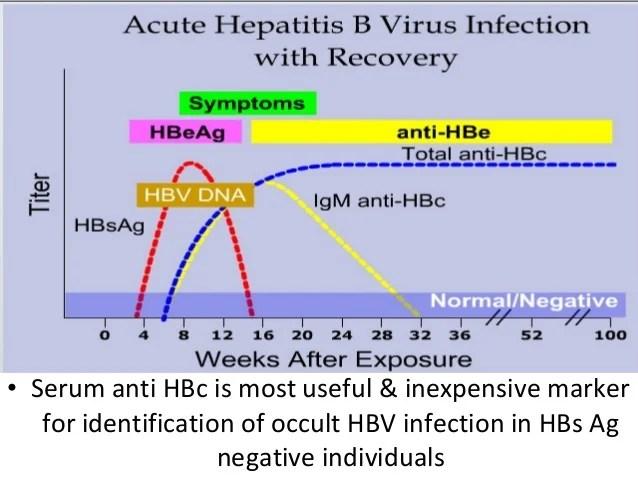 laboratory diagnosis of viral hepatitis (B & C)