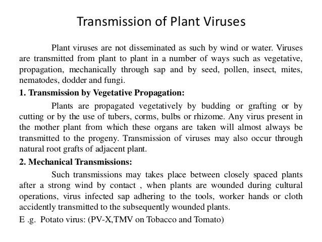B Sc Agriculture I Principles Of Plant Pathology U 4