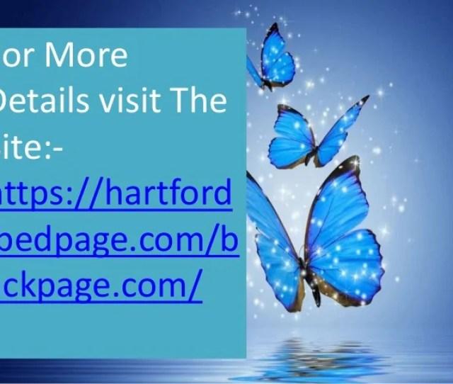 Backpage Hartford Provides Free Listing Service 4