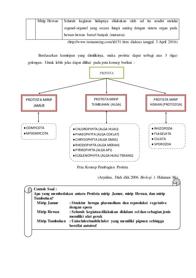 Soal Protista Mirip Tumbuhan : protista, mirip, tumbuhan, PENGENALAN, PROTISTA