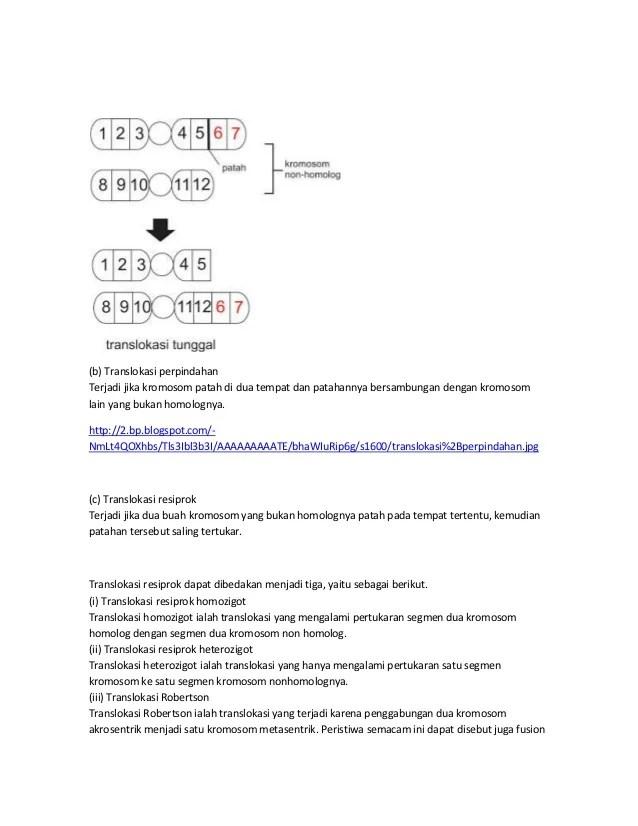 Translokasi Resiprok Dan Non Resiprok : translokasi, resiprok, Bahan, Genetika