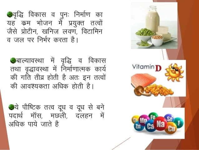 Balance Diet Hindi Copy