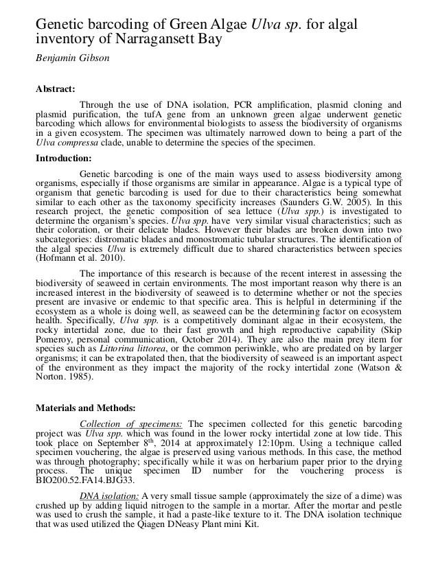 lab report apa example